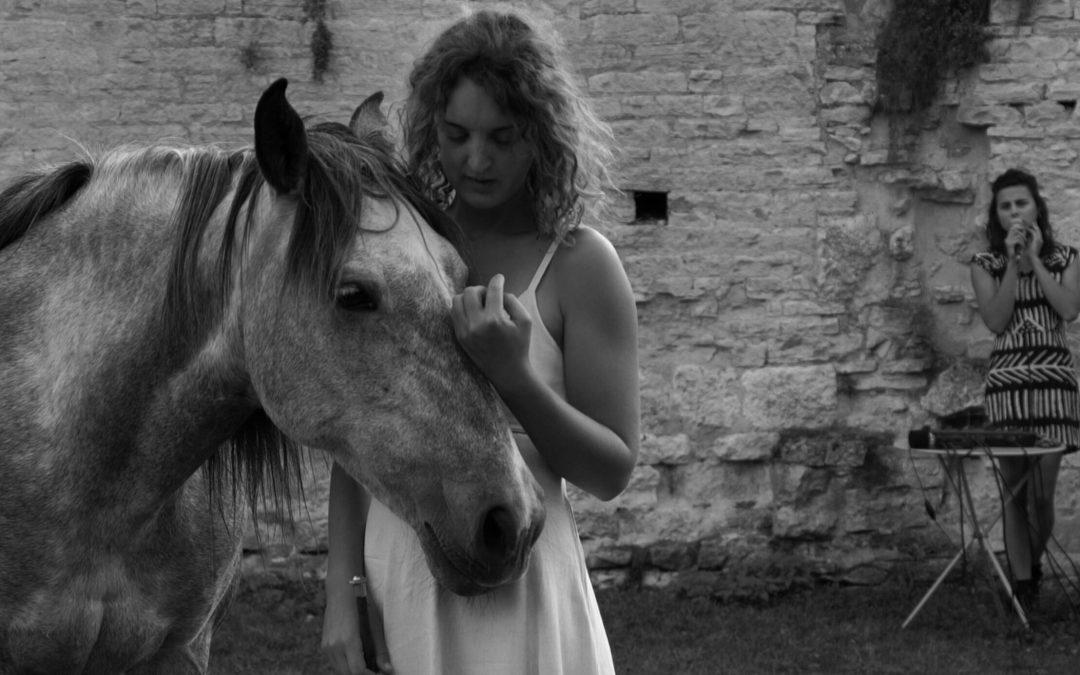 Spectacle musical et équestre»Elzaer» à Cercy-la-Tour